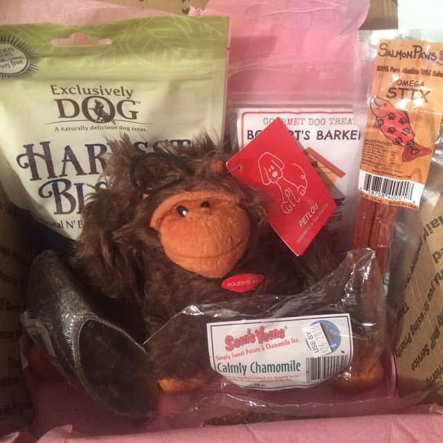 Look at all of these great dog treats from @bugysbox Keep an eye out for my review coming soon! #bugsysbox #dog #treat