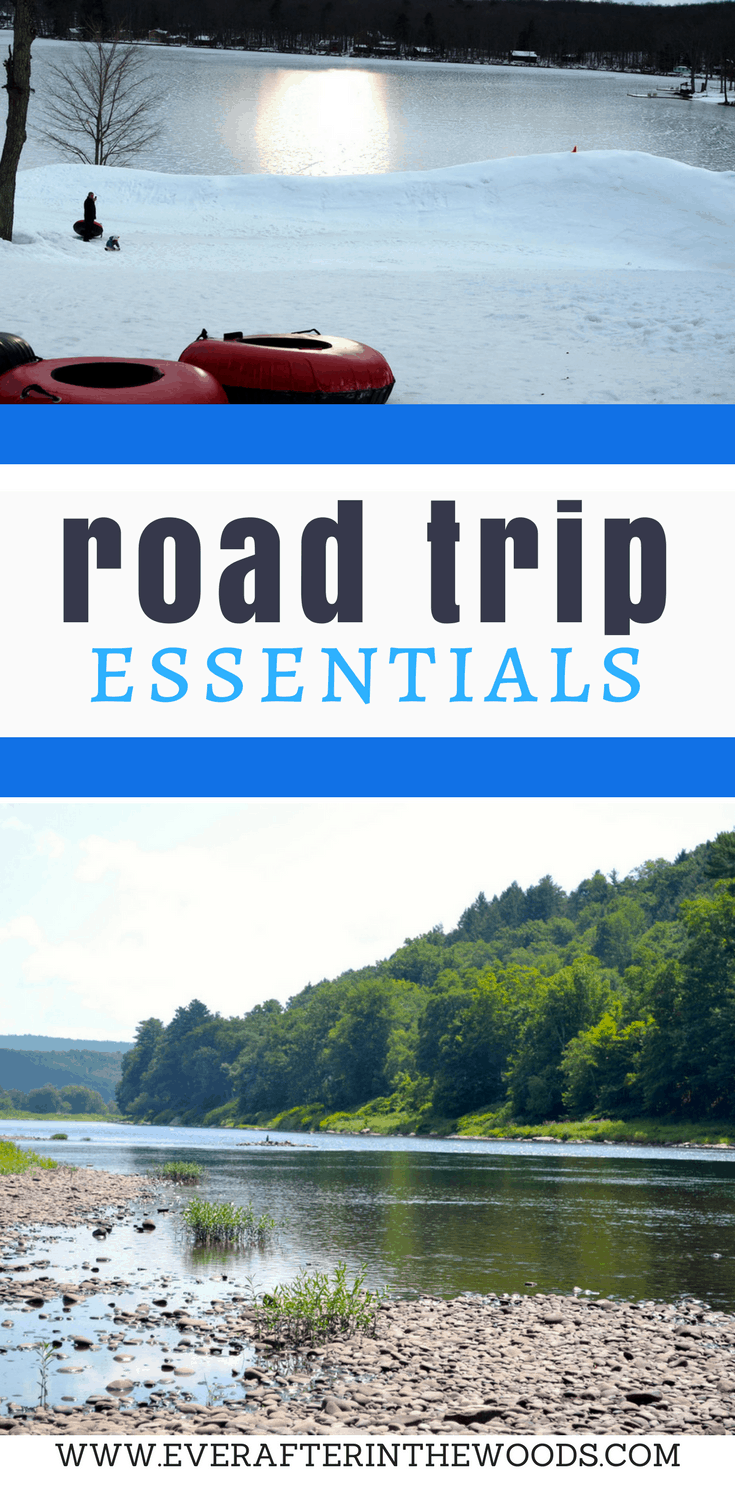 4 things you need for a road trip