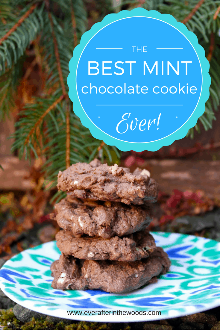 soft and chewy minty chocolate cookie different recipe