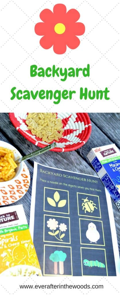 Backyard Scavenger Hunt (1)