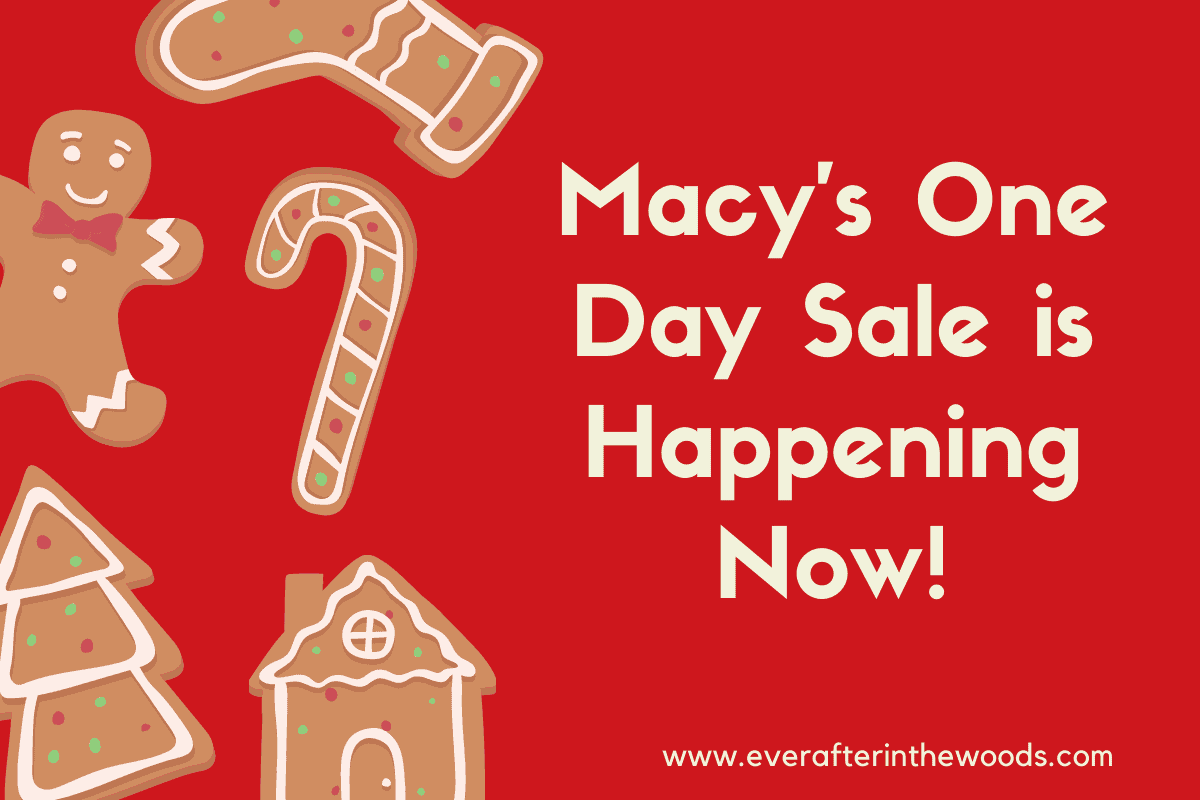 Save Up to 60% During Macy's One Day Sale
