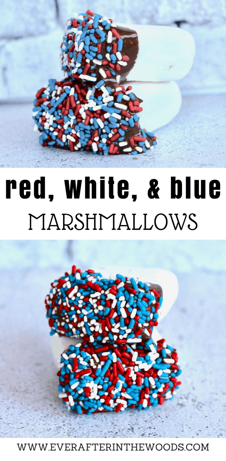easy patriotic dessert for fourth of july labor day