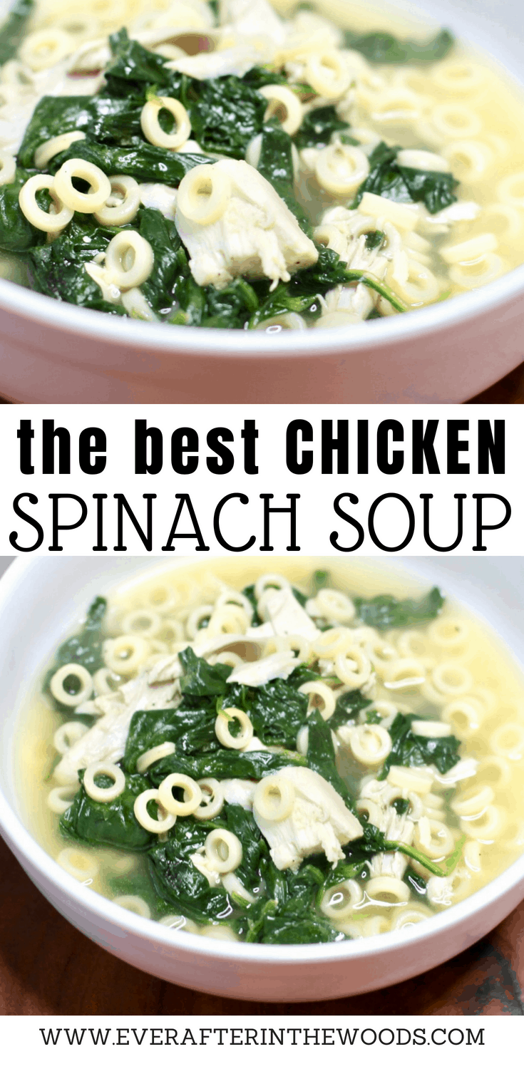 the best chicken spinach soup