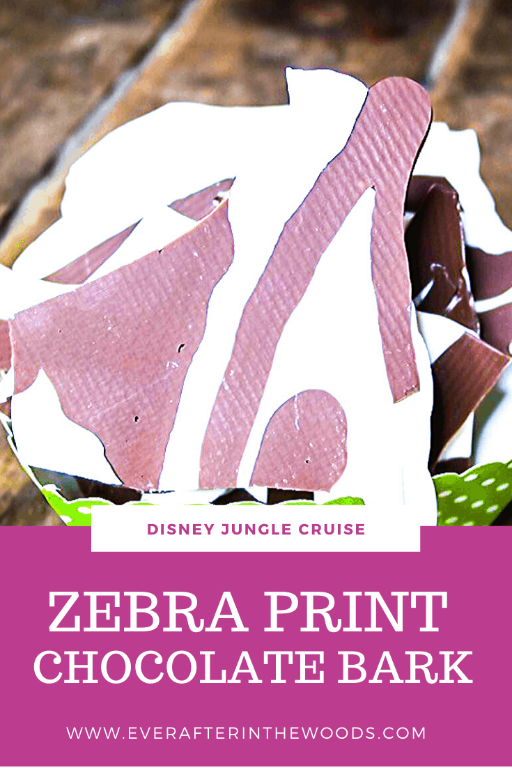 Disney Jungle Cruise birthday party ideas.