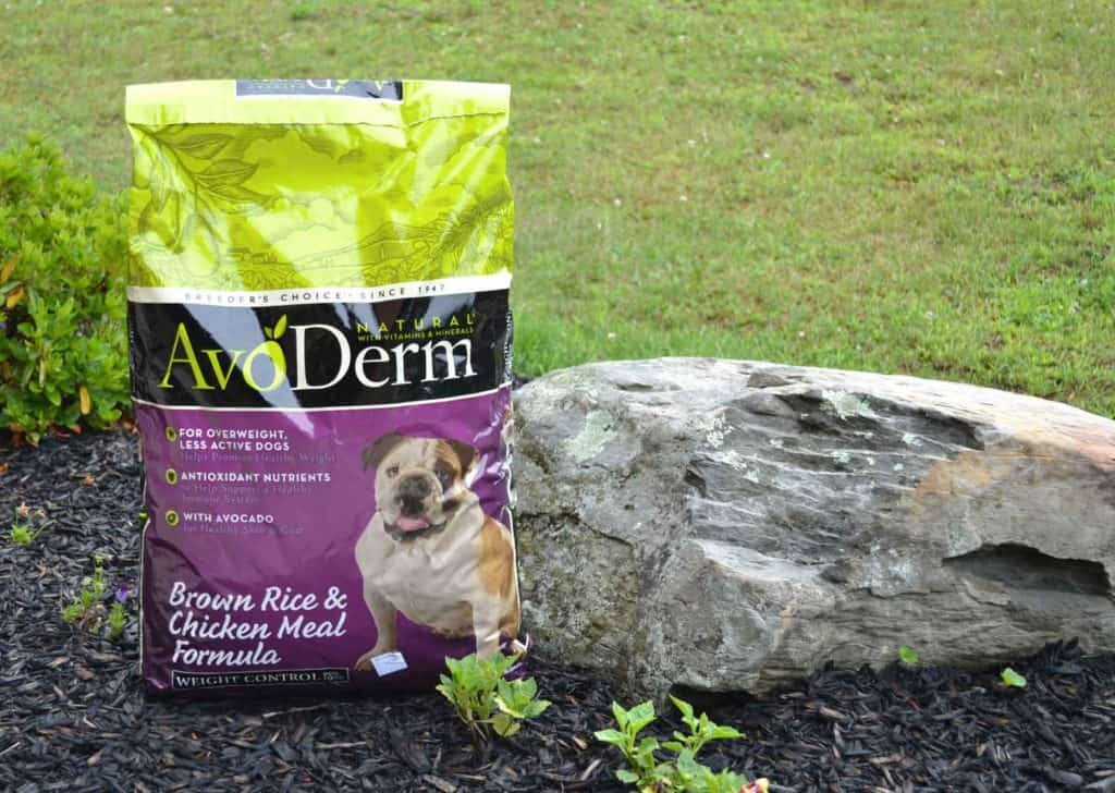 avoderm-dog-food