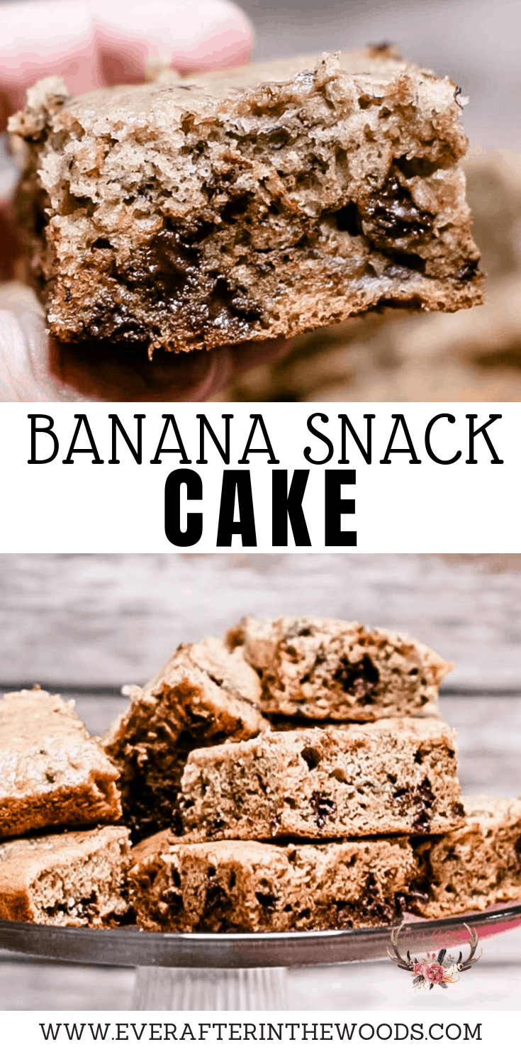easy to make banana snack cake with no added sugar