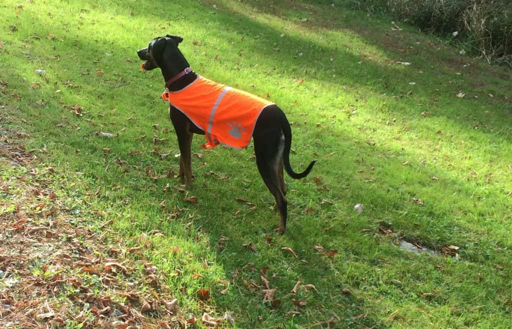 bella-hunting-vest
