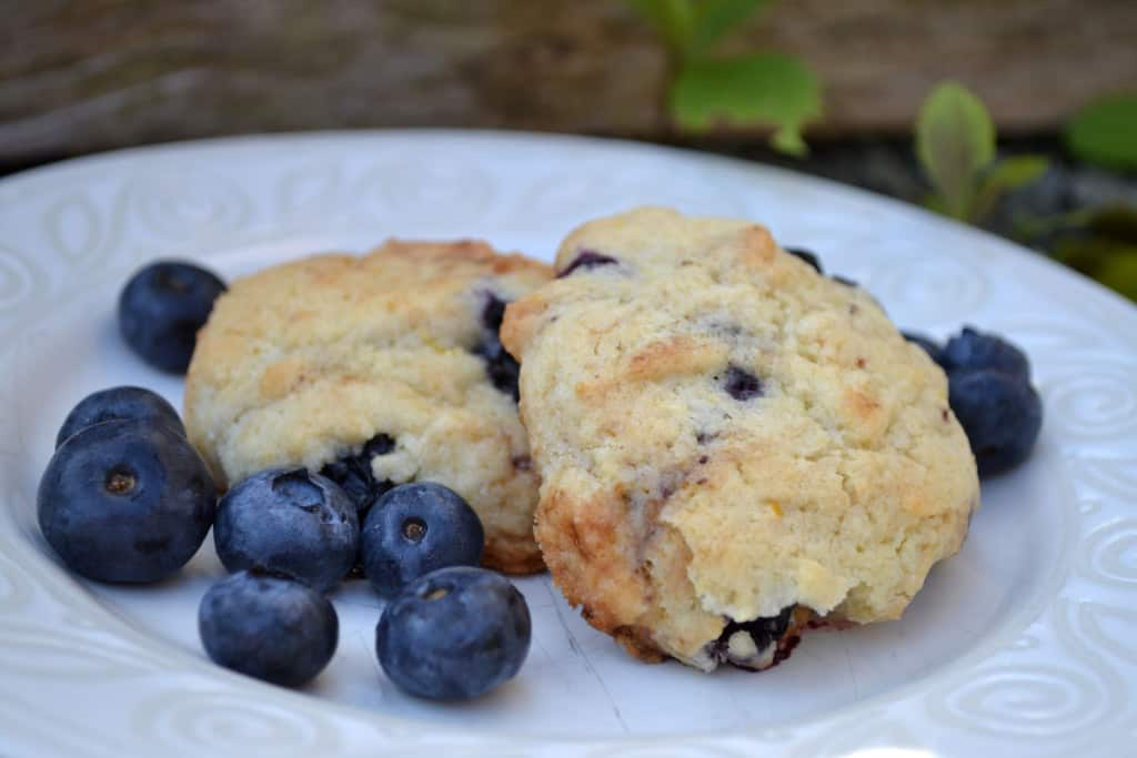 Blueberry Almond Cookie Recipe - Ever After in the Woods