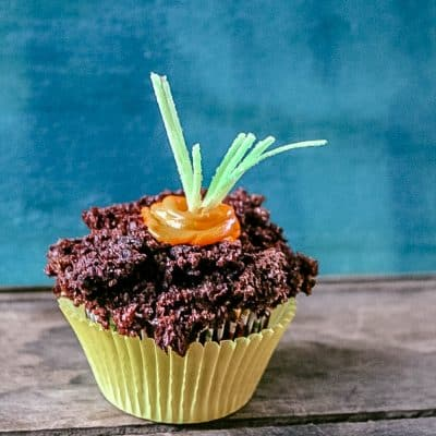 Dirt Cupcakes with Planted Carrot