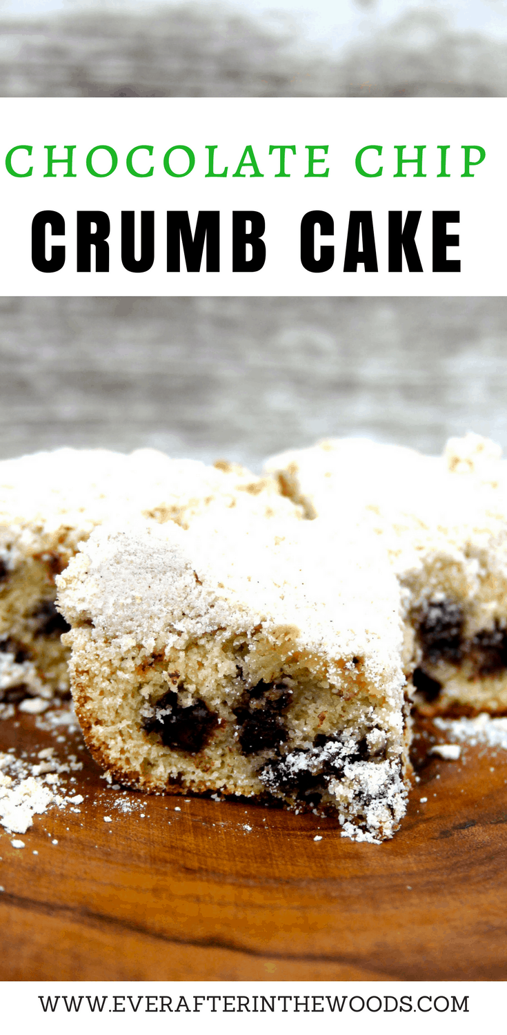 best chocolate chip coffee crumb cake | best crumb coffee cake