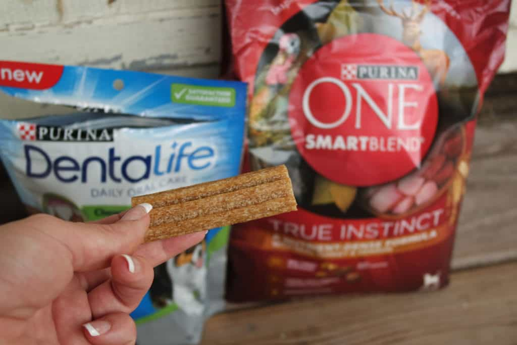dentalife-food