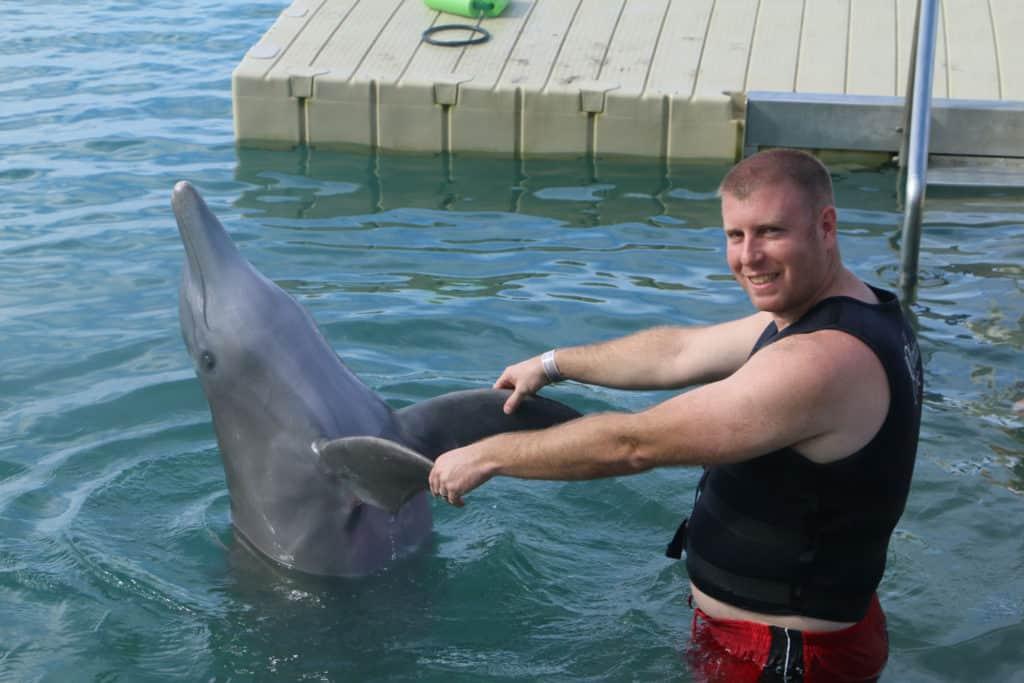 dolphin-cove