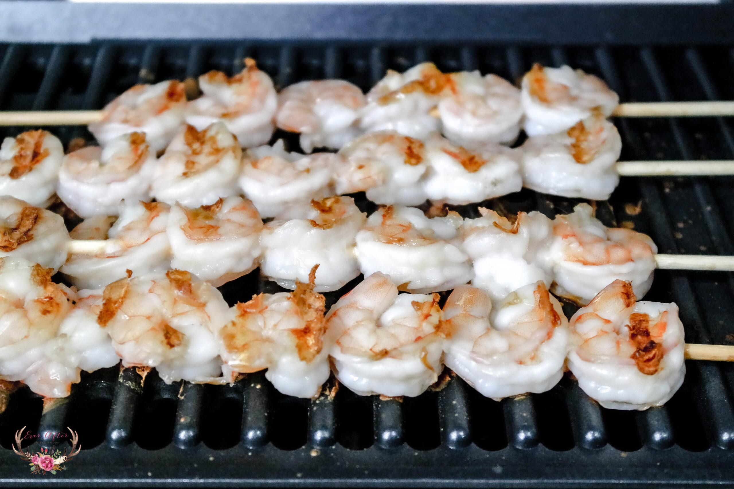hamilton beach indoor searing grill
