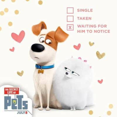 Happy Valentine's Day from THE SECRET LIFE OF PETS.