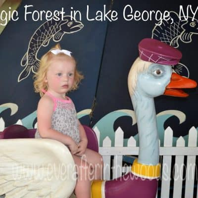 the magic forest lake george ny