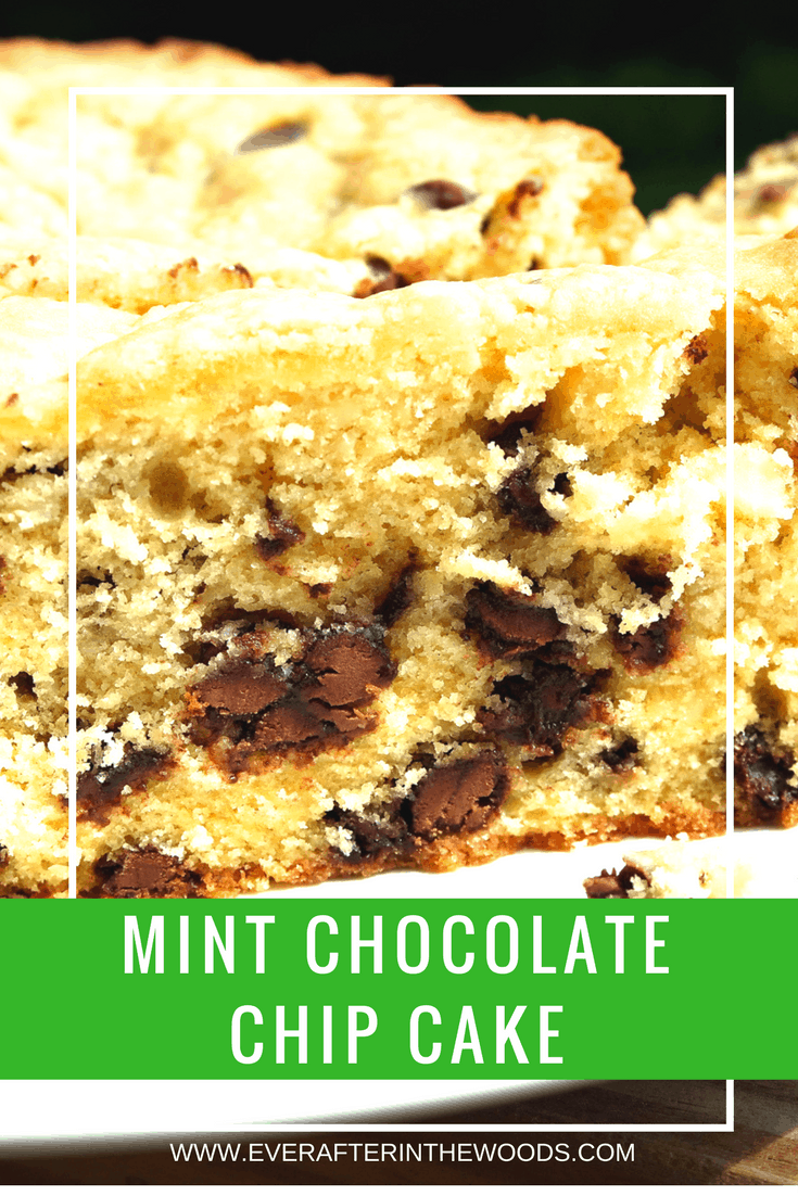 Mint Chocolate Chip Cake Ever After In The Woods