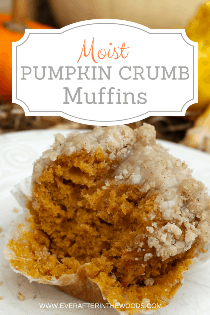 moist-pumpkin-crumb-muffin
