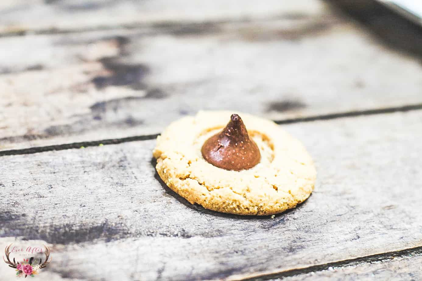 peanut butter blossom cookie recipe