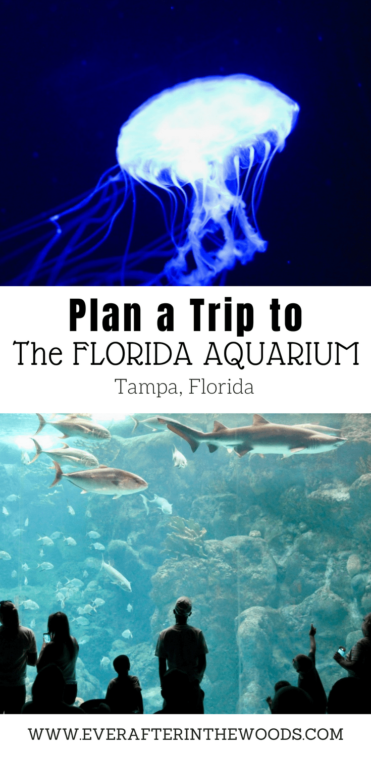 how long does it take to visit the florida aquarium