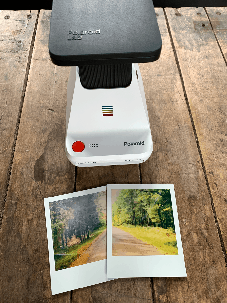 polaroid lab digital images