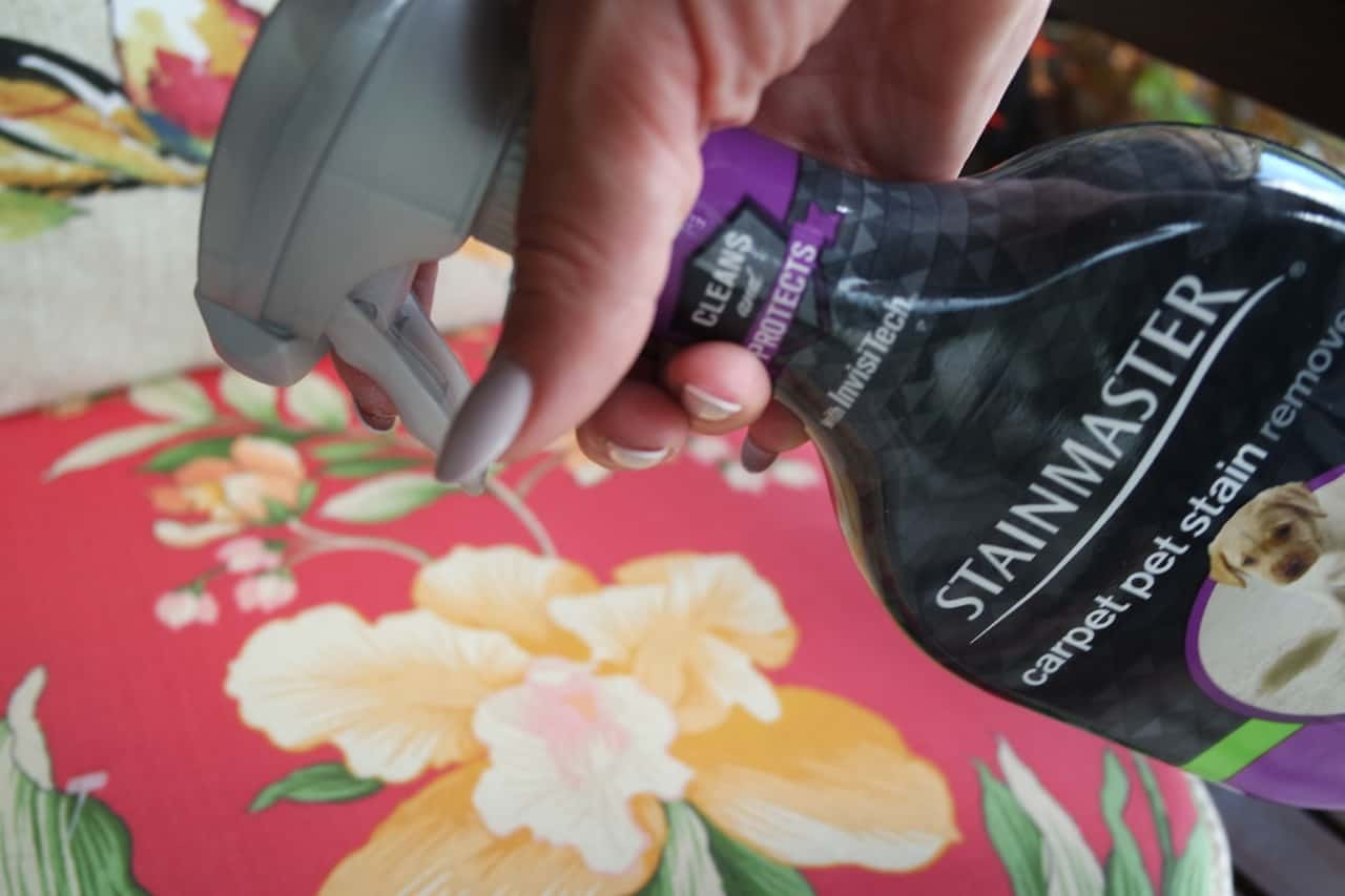 Stainmaster Carpet Odor And Spot Remover Stainmaster