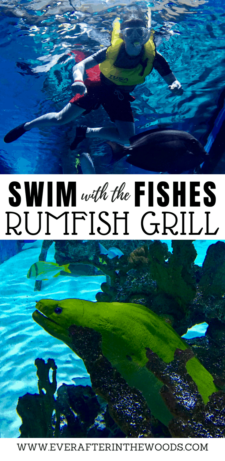 rumfish grill guy harvey outpost