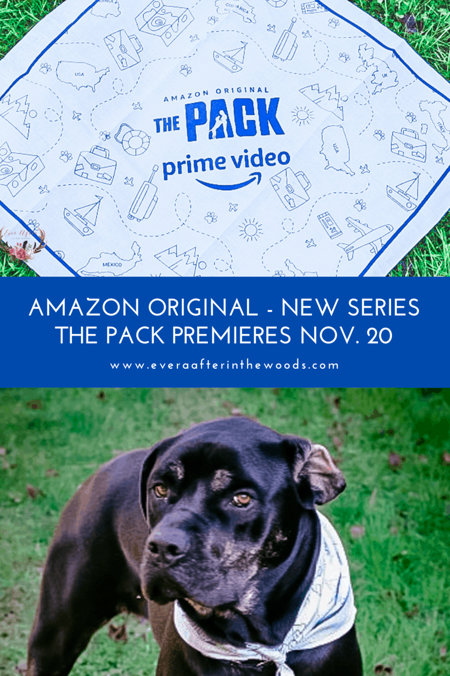 Watch The Pack on Amazon Prime Video, November 20th!