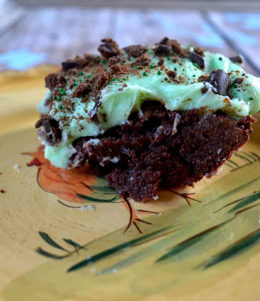 delicious recipe for thin mint girl scout cookies
