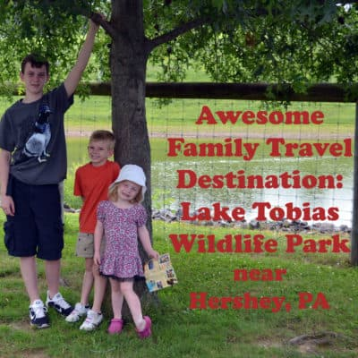 Lake Tobias Wildlife Park – Great Trip for the Family!