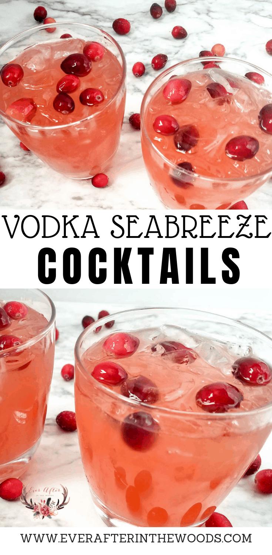 how to make a vodka seabreeze